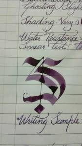 Writing sample - closeup